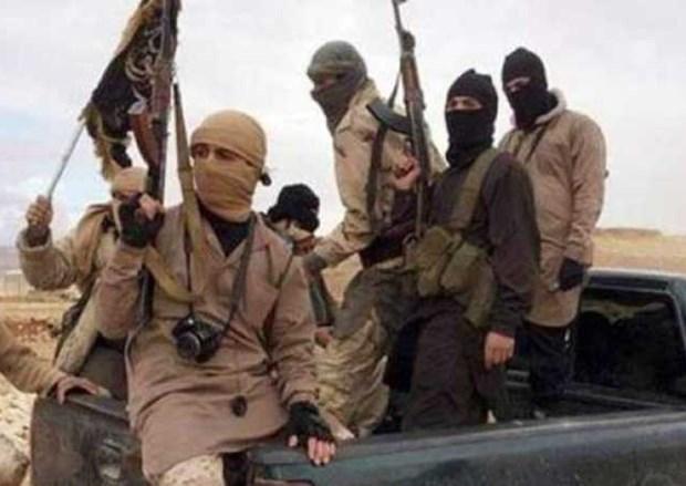 Al-Qaeda xac nhan thu linh nhom thanh chien o Tunisia thiet mang hinh anh 1