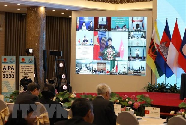 Dai hoi dong Lien nghi vien ASEAN lan thu 41 thanh cong tot dep hinh anh 2