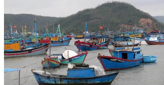 Cac tinh Khanh Hoa, Thua Thien-Hue va Phu Yen ung pho voi bao so 12 hinh anh 1