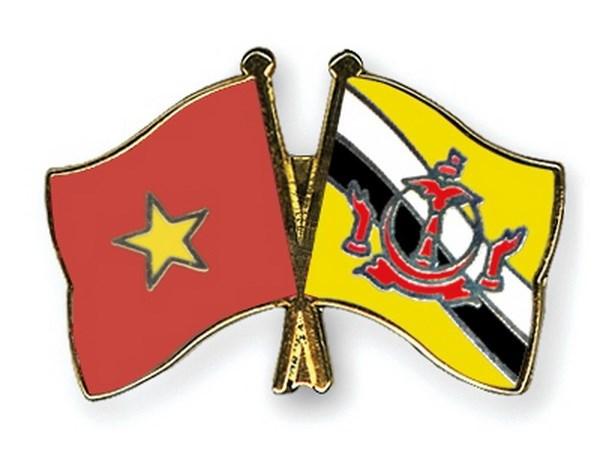 Lanh dao Viet Nam gui dien mung Quoc khanh Brunei Darussalam hinh anh 1