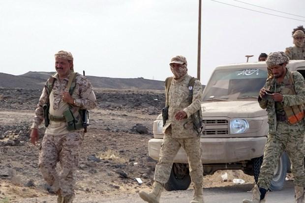 My, Anh, Ai Cap keu goi Houthi cham dut cuoc tan cong o mien Bac Yemen hinh anh 1
