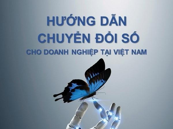 Lan dau cong bo tai lieu huong dan chuyen doi so cho doanh nghiep hinh anh 1