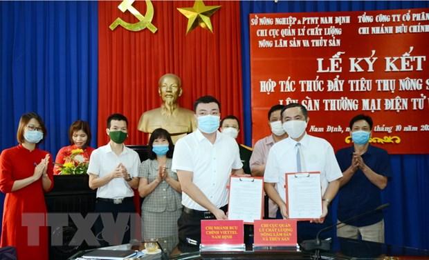 Nam Dinh: Ky ket hop tac thuc day dua nong san len san dien tu hinh anh 1