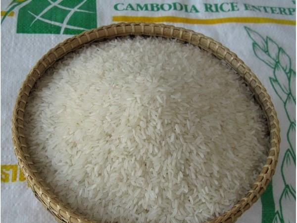 Suc ep canh tranh tu gao Campuchia tren thi truong Viet Nam hinh anh 1