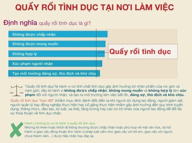 Viet Nam tham gia dam phan Cong uoc moi cua ILO ve quay roi tinh duc hinh anh 2