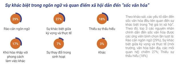 50% ung vien nguoi nuoc ngoai bi soc van hoa khi den Viet Nam lam viec hinh anh 2