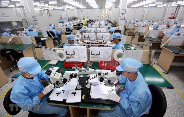 ILO: Gan mot nua luc luong lao dong toan cau co nguy co mat sinh ke hinh anh 2