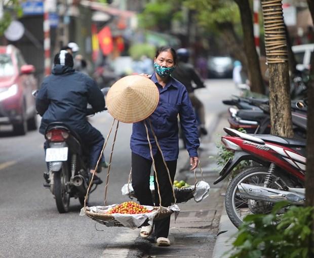 ILO: Gan mot nua luc luong lao dong toan cau co nguy co mat sinh ke hinh anh 1