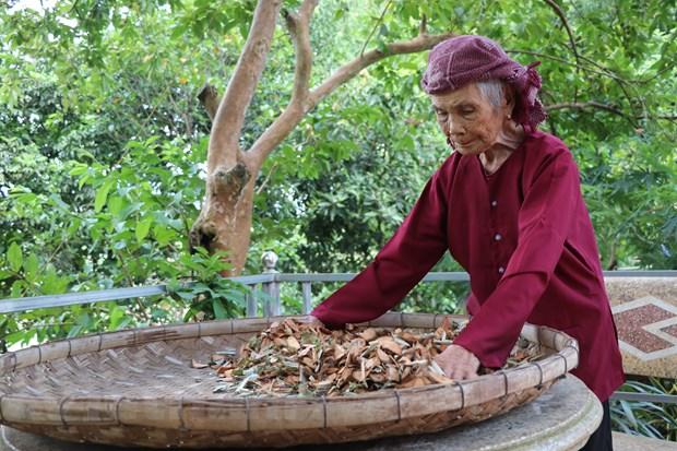 Me Viet Nam Anh hung: Nhung nguoi 'chat thuong dau' thanh 'nhua song' hinh anh 1