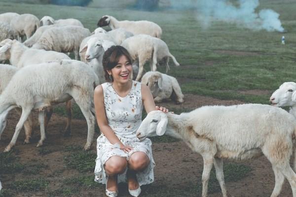 Phim Viet thang Chin: Su 'len ngoi' cua phim de tai gia dinh hinh anh 4
