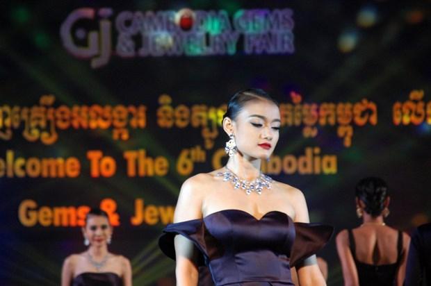 [Photo] Gan 100 cong ty tham du Hoi cho da quy Campuchia hinh anh 4