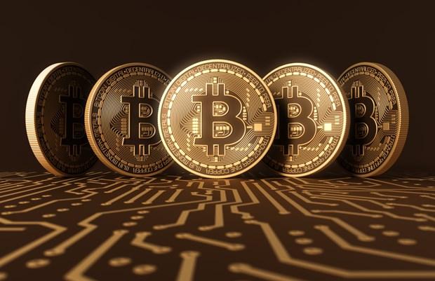 Bitcoin tang gia dung tran, lan dau vuot moc 12.000 USD hinh anh 1