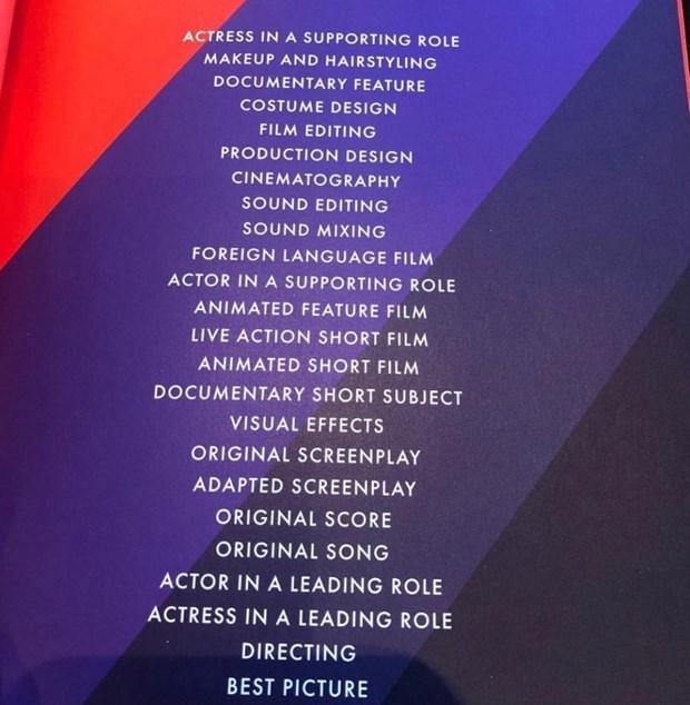 Oscar 2019: ''Green Book'' va ''Black Panther'' dai thang hinh anh 9