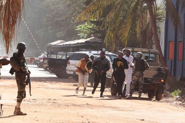 Al Jazeera: Nhom lien quan al-Qaeda tuyen bo da tan cong o Mali hinh anh 1