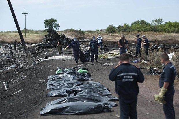 Nhieu hang hang khong da bay qua Ukraine, chi MH17 bi ban hinh anh 1