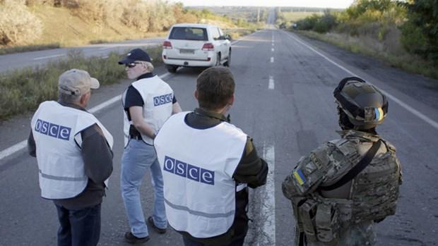 200 linh du Duc se den Ukraine bao ve quan sat vien OSCE hinh anh 1