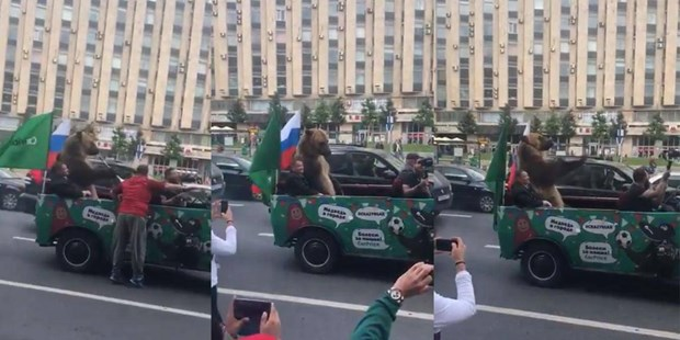 Fan Nga dem gau di dieu pho sau chien thang truoc Saudi Arabia hinh anh 1