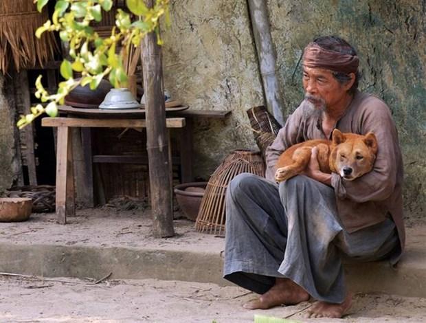 Phim chuyen the: Khan gia can trung thuc, dao dien muon sang tao hinh anh 2