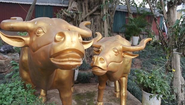 Tet Tan Suu den tham den ong trau vang canh ho Tay hinh anh 1