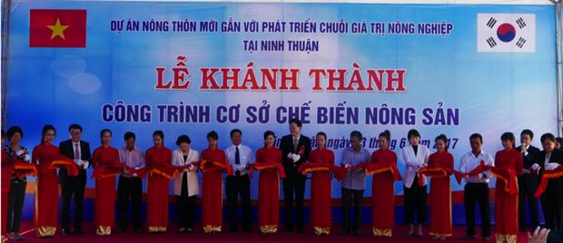 Khanh thanh nha may ot bot tong von 650.000 USD tai Ninh Thuan hinh anh 1