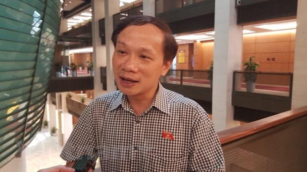 Dai bieu quoc hoi: Trong kho khan, can co giai phap 'lieu com gap mam' hinh anh 2