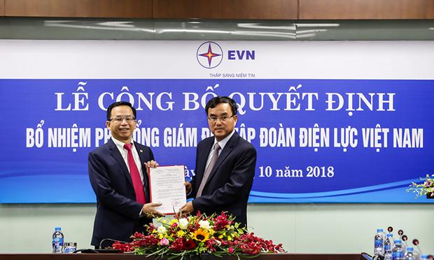 Ong Nguyen Xuan Nam duoc bo nhiem giu chuc vu Pho Tong giam doc EVN hinh anh 1