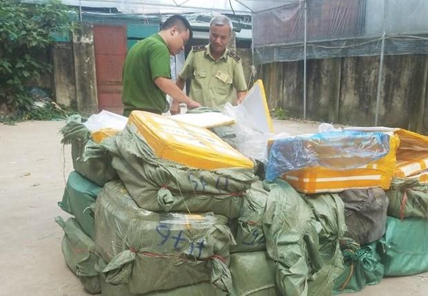 Tam giu 1.350kg nam lon khong hoa don chung tu tren dia ban Ha Noi hinh anh 1