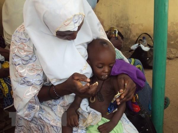 Hon 800.000 tre em Nigeria khon kho vi nhom Hoi giao Boko Haram hinh anh 1