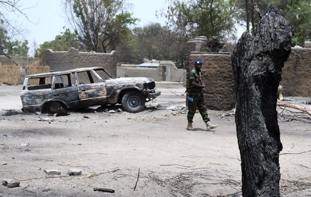 Quan doi Nigeria tieu diet mot thu linh cap cao nhom Boko Haram hinh anh 1