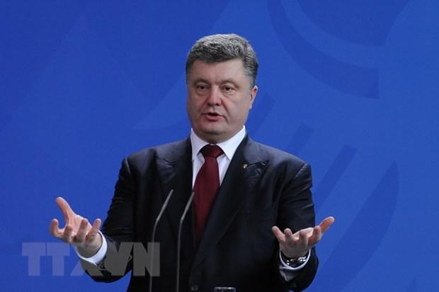 Ukraine thong qua chien luoc an ninh quoc gia den nam 2020 hinh anh 1
