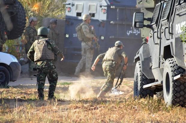 Tunisia triet pha mot mang luoi khung bo lien quan den IS hinh anh 1