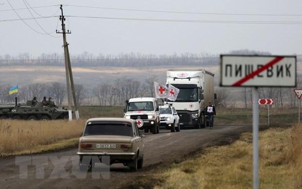 Dien Kremlin khong loai tru kha nang doi thoai truc tiep voi Ukraine hinh anh 1