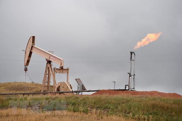 Iraq kho tham gia thoa thuan cat giam dau cua OPEC hinh anh 1
