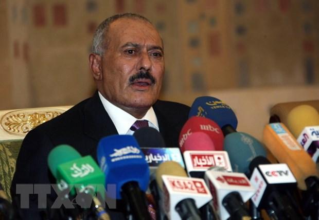 Cuu Tong thong Yemen Saleh de ngo kha nang dam phan voi Saudi Arabia hinh anh 1