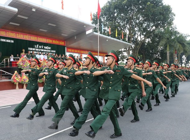 Trung doan 209 don nhan Huan chuong Bao ve To quoc hang Ba hinh anh 2