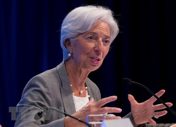 Tong Giam doc IMF canh bao