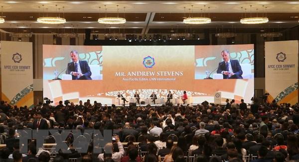 APEC 2017: Chung tay de tang truong toan cau lan toa rong rai hinh anh 1