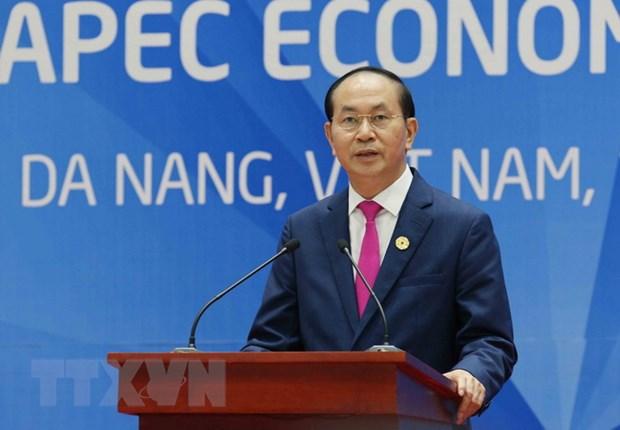 Bai phat bieu cua Chu tich nuoc ve ket qua Hoi nghi Cap cao APEC 2017 hinh anh 1