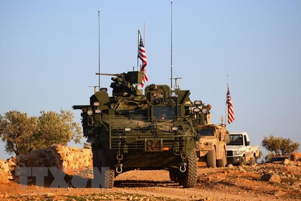 My va Tho Nhi Ky doi thoai coi mo ve chien dich tai Syria hinh anh 1