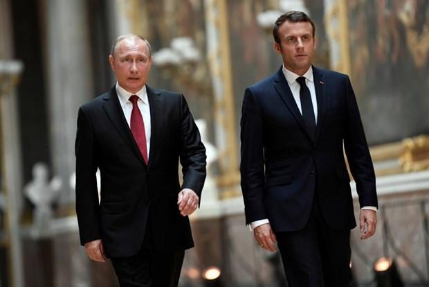 Tong thong Nga Putin va Tong thong Phap Macron dien dam ve Syria hinh anh 1