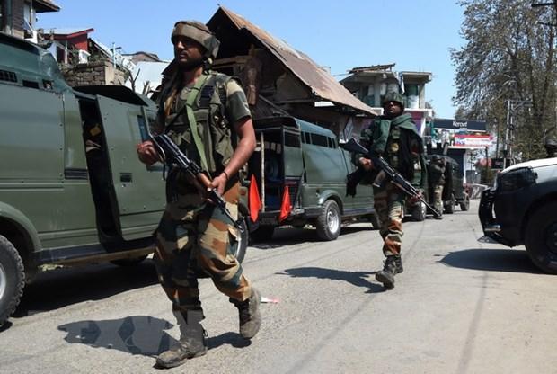 Binh sy An Do va Pakistan dau sung du doi o Kashmir hinh anh 1