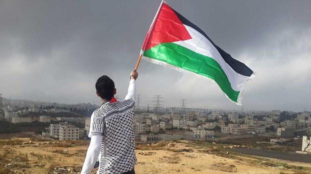 Palestine no luc tang cuong vi the tren truong quoc te hinh anh 1