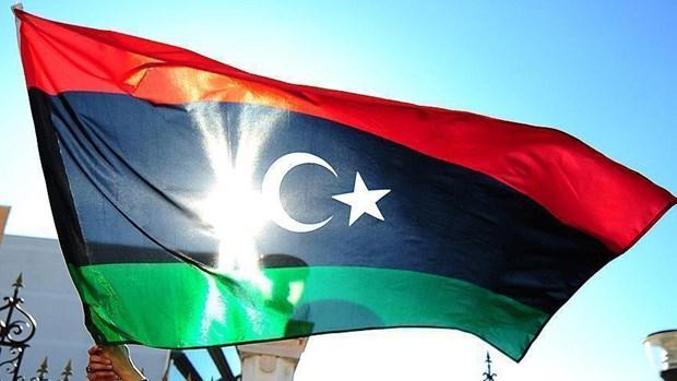 Tho Nhi Ky khang dinh ho tro danh cho chinh phu Libya hinh anh 1