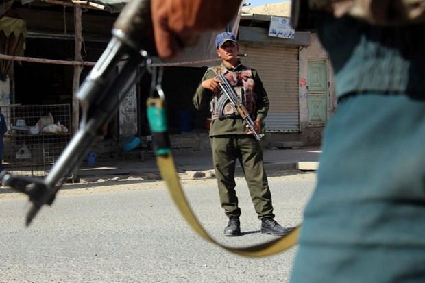 Afghanistan tuyen bo keo dai lenh ngung ban voi Taliban hinh anh 1