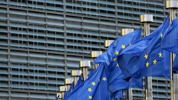 16 nuoc EU tham du hoi nghi thuong dinh khong chinh thuc hinh anh 1