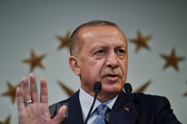 My dang sap xep cuoc dien dam giua ong Trump va ong Erdogan hinh anh 1