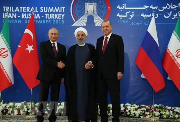 Syria: Ong Putin hy vong phien quan tai Idlib se ha vu khi dau hang hinh anh 1
