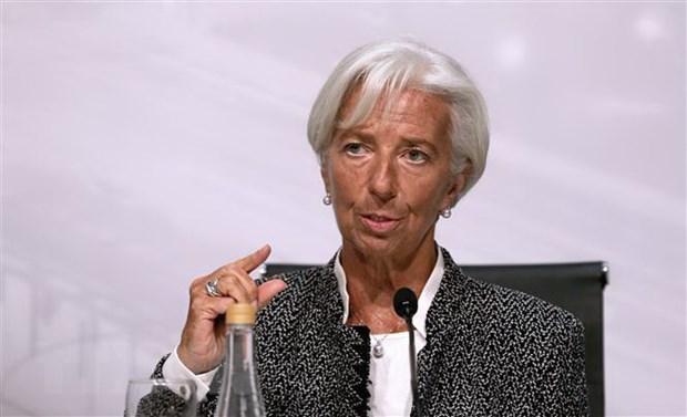 IMF tang khoan vay tin dung cho Argentina len hon 57 ty USD hinh anh 1