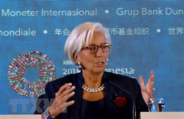 IMF thong qua goi ho tro tai chinh hon 56 ty USD cho Argentina hinh anh 1