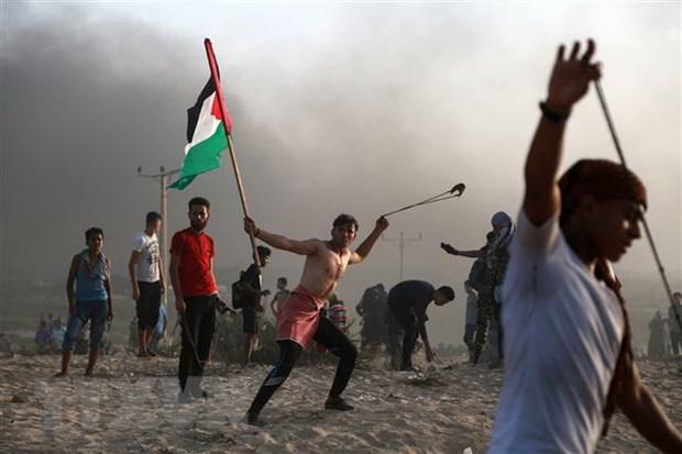Cac nhom vu trang Palestine tuyen bo ngung ban voi Israel hinh anh 1